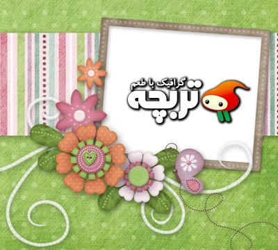 قاب تصوير گل و پروانه
