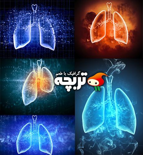 دانلود تصاویر با کیفیت ریه Abstract Lungs Fotolia