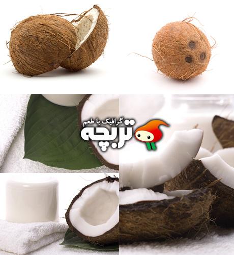 دانلود تصاویر با کیفیت نارگیل Coconut Fotolia