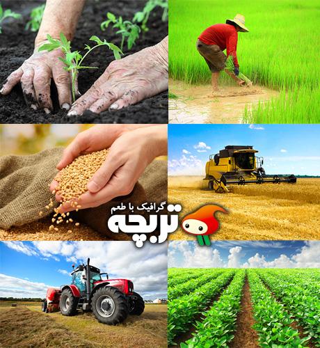 دانلود تصاویر با کیفیت کشاورزی Agriculture ShutterStock Part 01