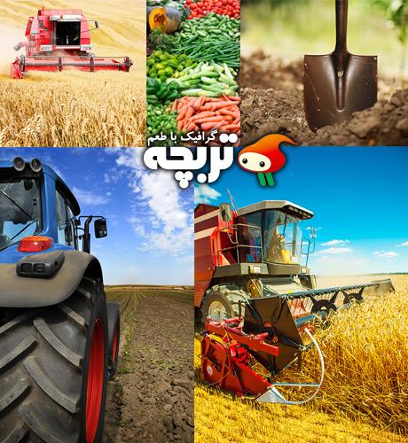 دانلود تصاویر با کیفیت کشاورزی Agriculture ShutterStock Part 02