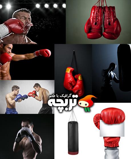 دانلود تصاویر با کیفیت بوکس Boxing Ring ShutterStock