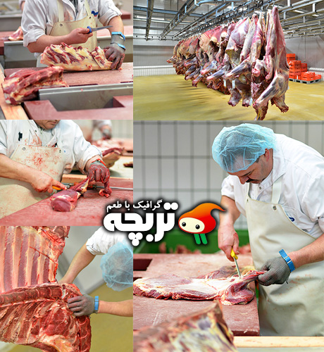 Butcher_Fotolia_Images_[Www.Torobche.Com]