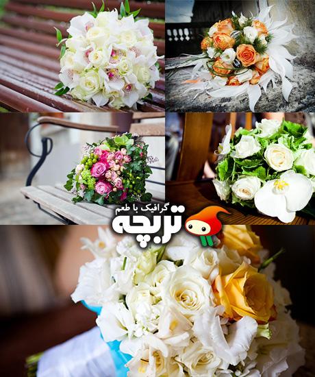 دانلود تصاویر با کیفیت دسته گل عروس Wedding Bouquet Stock Images