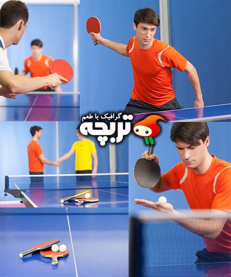 دانلود تصاویر با کیفیت تنیس روی میز Table Tennis Stock Images