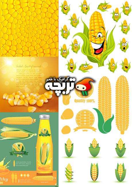 دانلود وکتورهای شاتر استوک ذرت Corn Element ShutterStock