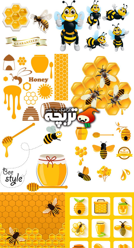 دانلود وکتور عسل شاتراستوک Honey ShutterStock Vectors