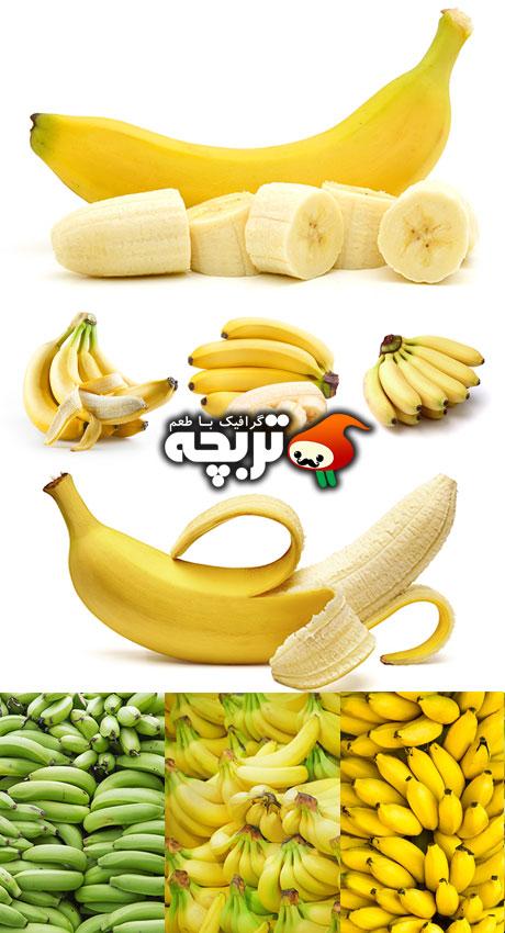دانلود تصاویر با کیفیت موز Bananas ShutterStock Images