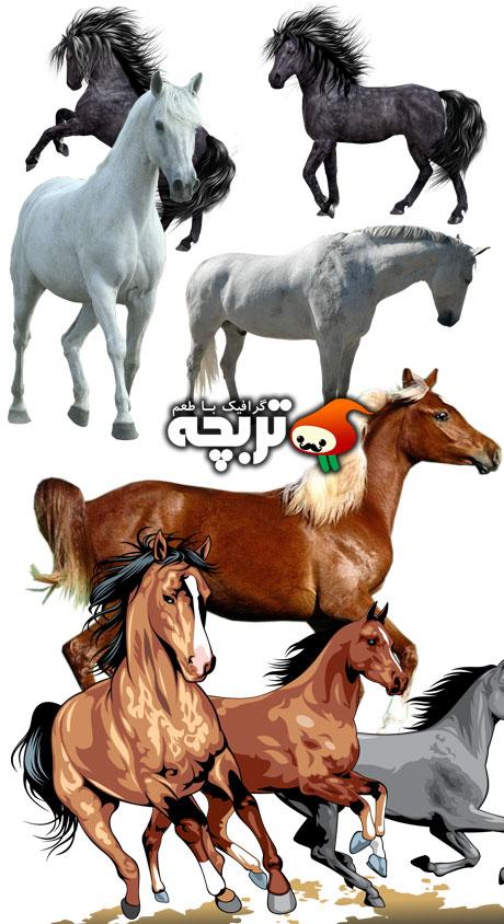 دانلود تصاویر دور بُری شده اسب Beautiful Horses Clipart