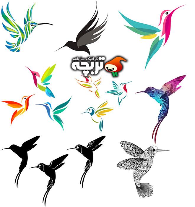 دانلود آیکون وکتورهای مرغ مگس خوار Humming Bird Icon Vector
