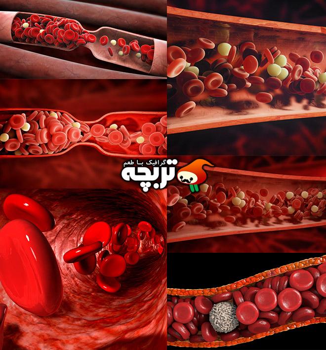 دانلود تصاویر با کیفیت گلبول های قرمز خون Red Blood Cells