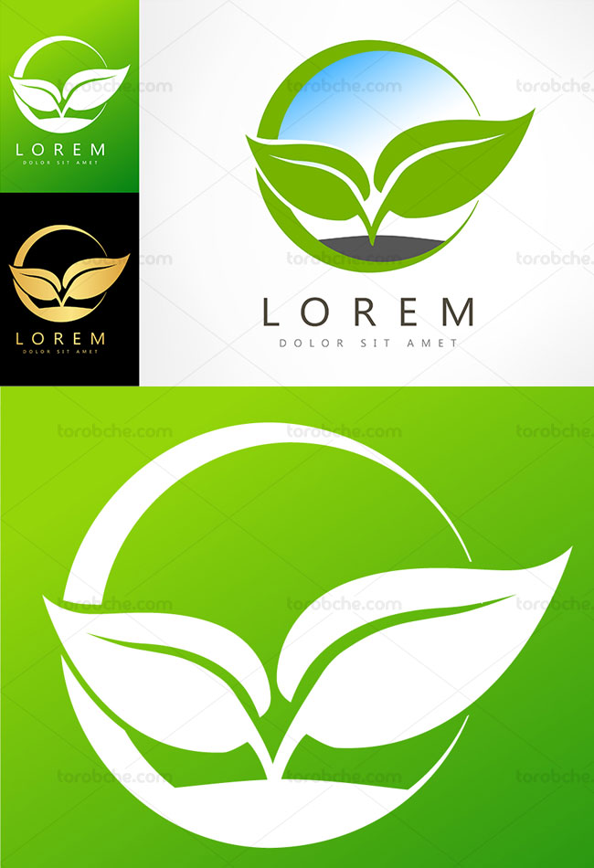 وکتور لوگوی نماد جوانه گیاه