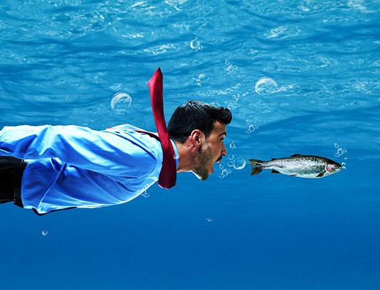تصویر با کیفیت مفهومی کسب و کار مردی در پی ماهی