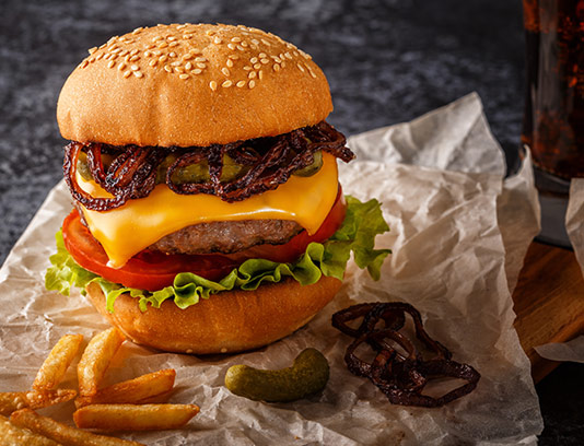 عکس با کیفیت همبرگر با سبزیجات و پنیر گودا