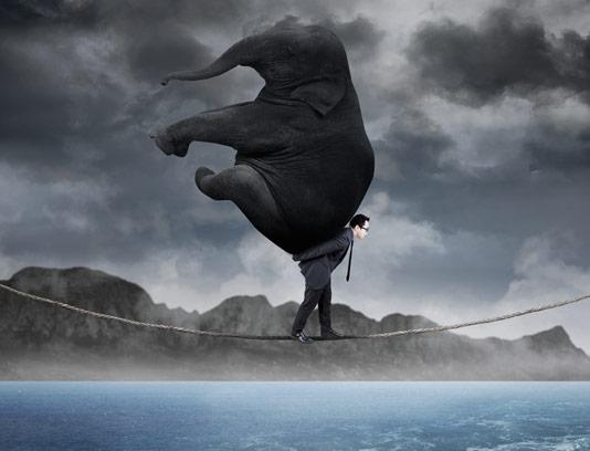 عکس با کیفیت کسب و کار مفهومی حرکت روی تناب نازک با فیل