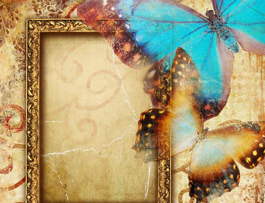 تکسچر و بکگراند طراحی با قاب عکس قدیمی و پروانه