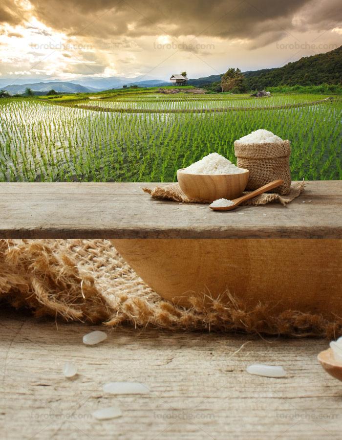 عکس با کیفیت شالیکاری و کیسه ی برنج