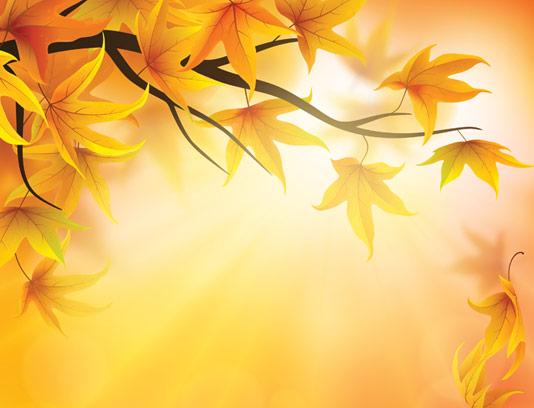وکتور پس زمینه برگ های پاییزی شماره ۰۱