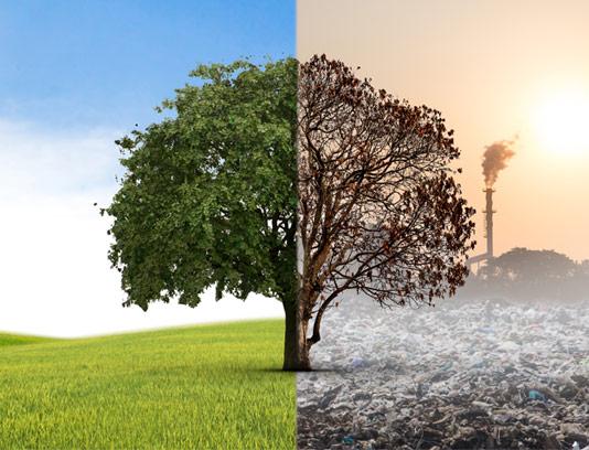 عکس با کیفیت مفهومی طبیعت پاک و محیط ناسالم و آلوده