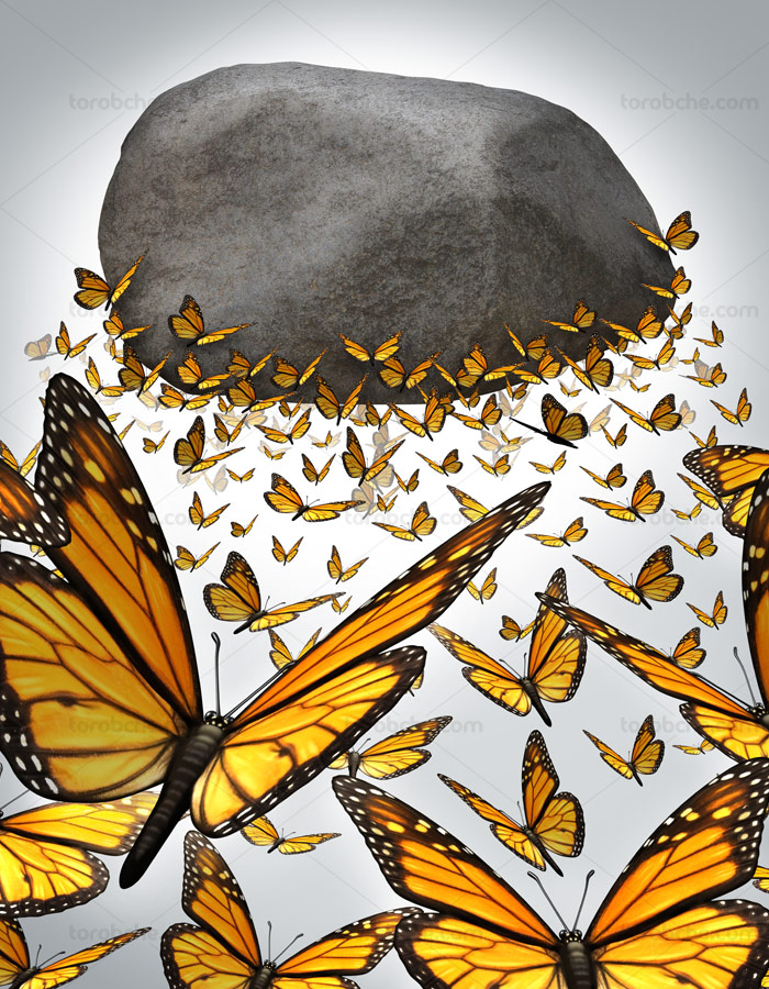 تصویر با کیفیت مفهومی آزادی با پروانگان در حال پرواز