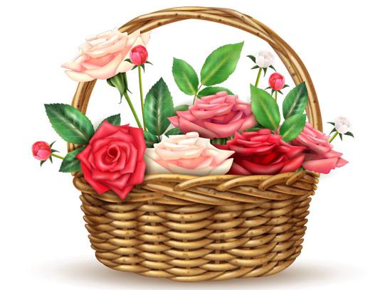 وکتور سبد گل های رز قرمز و صورتی