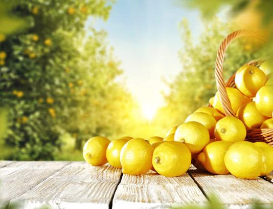 عکس با کیفیت لیمو ترش تازه و باغ لیمو