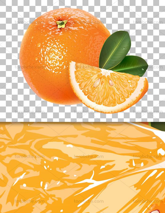 عکس دوربری شده پرتقال با کیفیت عالی و فرمت PNG