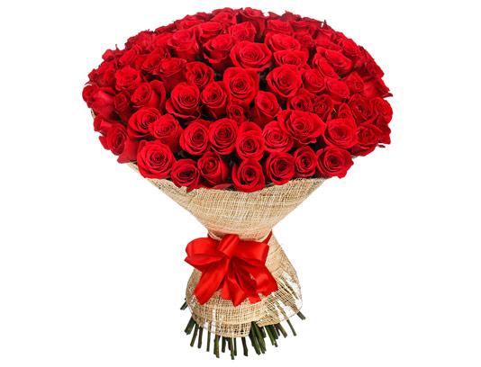 عکس دسته گل عروس رز قرمز با کیفیت عالی