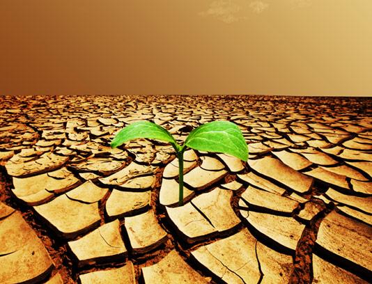 عکس با کیفیت زمین خشک شده و خشکسالی
