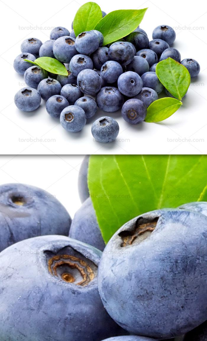 عکس با کیفیت دانه های میوه بلو بری