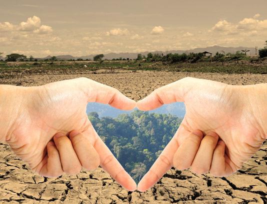 عکس با کیفیت و مفهومی خشکسالی و سرسبزی