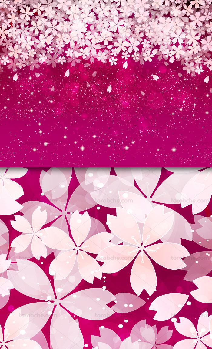 وکتور طرح بکگراند با گل های بهاری سفید رنگ