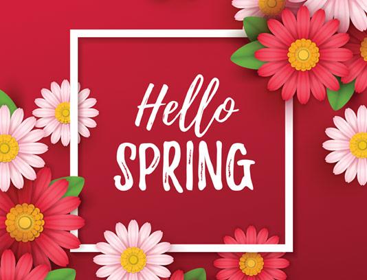 وکتور کادر و حاشیه با گل های بهاری رنگارنگ