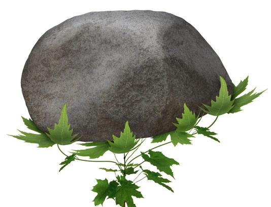 عکس با کیفیت مفهومی رشد گیاه در زیر سنگ