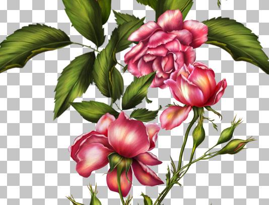 عکس دوربری شده گل و بته های پیچی نوار شکل
