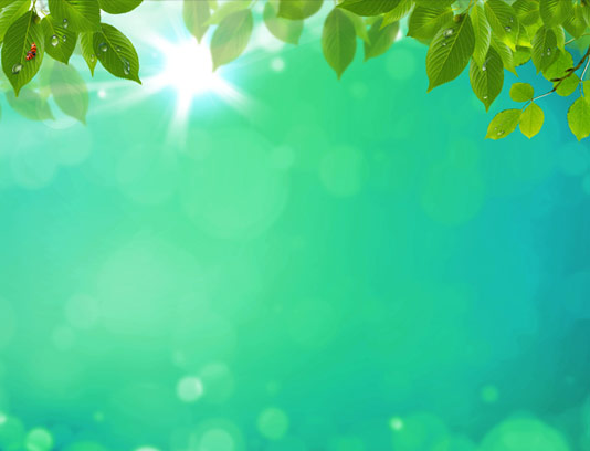 بکگراند و زمینه طبیعت با برگ های سبز تازه
