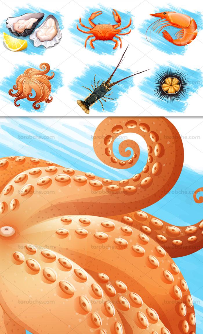 وکتور مجموعه غذاهای دریایی و حیوانات آبزی