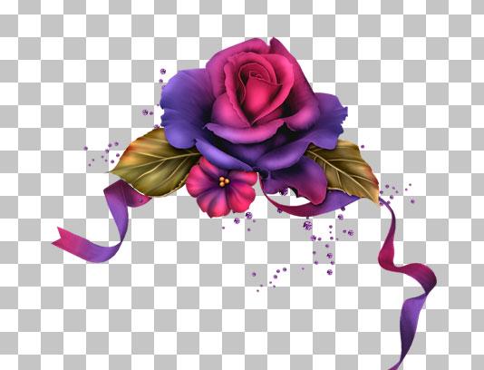 عکس با کیفیت دوربری شده گل رز بنفش و ربان