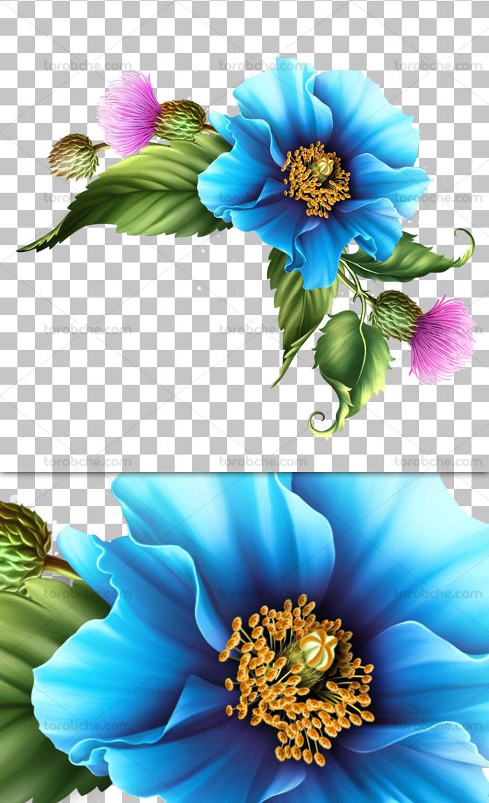 عکس با کیفیت دوربری شده گل و بته آبی