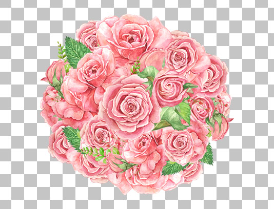 عکس دوربری شده دسته گل رز صورتی