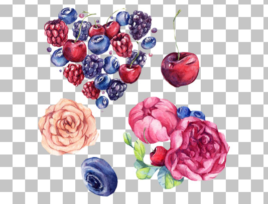 عکس دوربری شده المان های آبرنگی گل، میوه، آلبالو، گیلاس، بلوبری