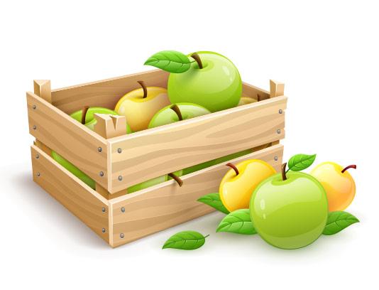 وکتور سیب زرد و سبز بهمراه جعبه بسته بندی