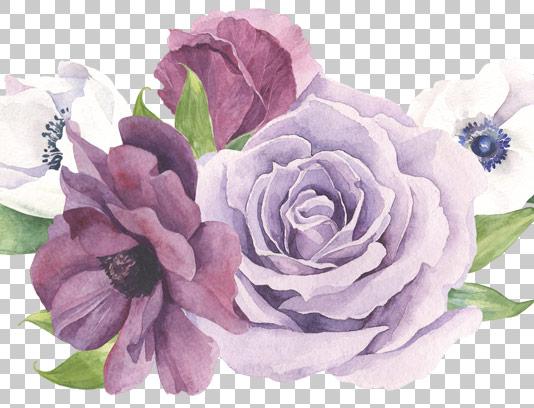 عکس دوربرش شده گل و برگ با کیفیت عالی