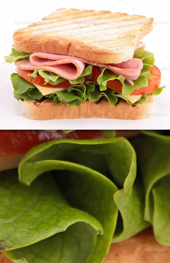 عکس با کیفیت ساندویچ ژامبون با کاهو و گوجه