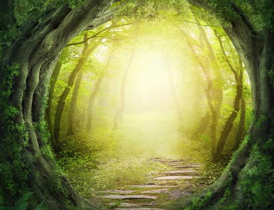 عکس بک گراند طبیعت سبز با جاده رویایی