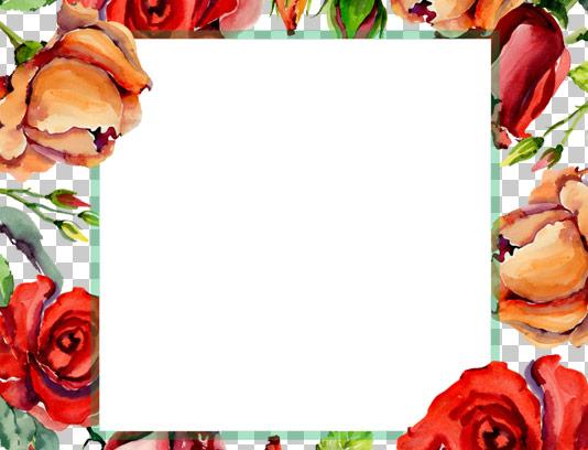 طرح قاب عکس با گل های آبرنگی و نقاشی شده