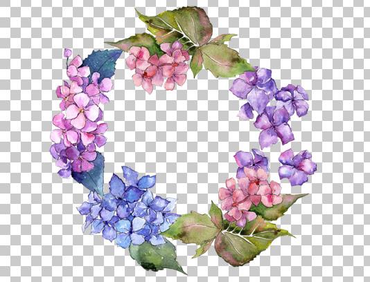 عکس حلقه گل دوربری شده با کیفیت