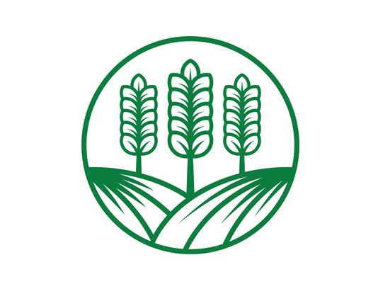 وکتور لوگو خوشه گندم کشاورزی
