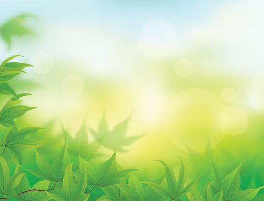 وکتور پس زمینه برگ درختان سبز رنگ