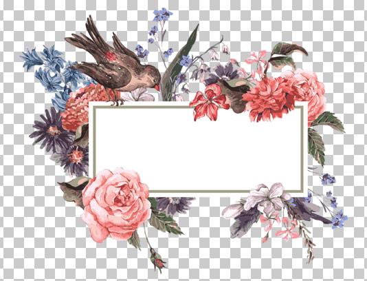کادر و حاشیه گل و بوته و پرنده